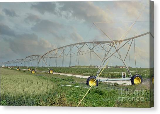 South Texas Irrigation Canvas Print by Darla Rae Norwood