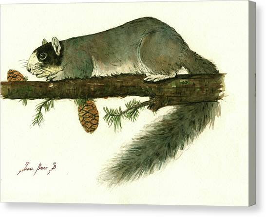 Squirrel Canvas Print - Southern Fox Squirrel  by Juan Bosco