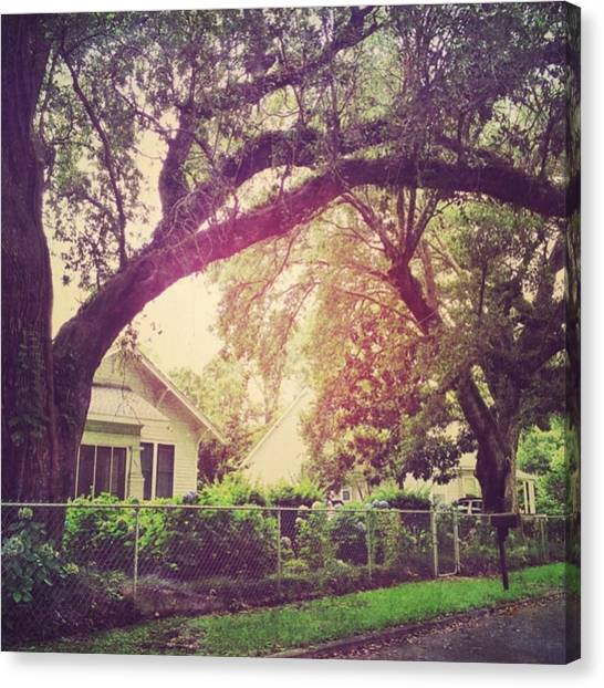 House Canvas Print - Southern Home #house  #coastalbeauty by Joan McCool