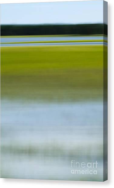 Marsh Grass Canvas Print - Southern Marsh Motion by Dustin K Ryan