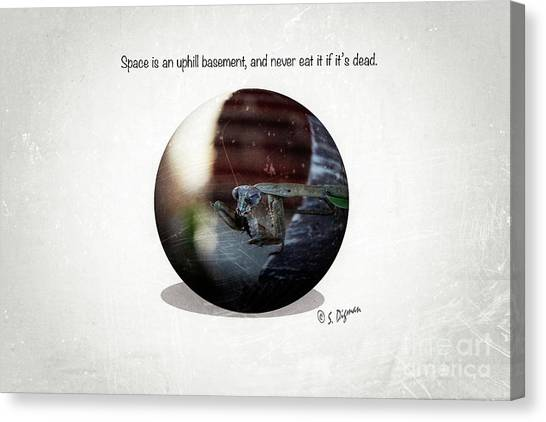Space Is An Uphill Basement  Canvas Print by Steven Digman