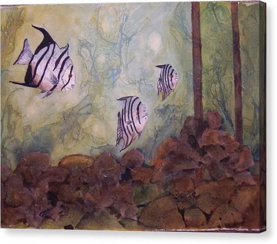 Spadefish In Fl Canvas Print