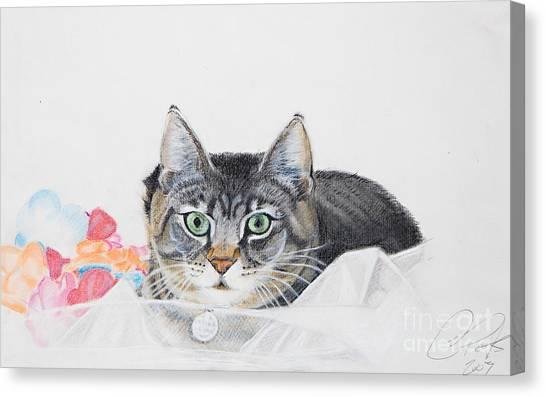 Sparkle Canvas Print by Raymond Potts
