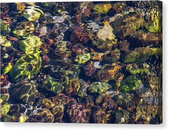 Sparkling Flowing Light Canvas Print by Leland D Howard