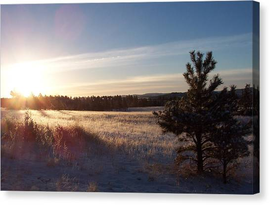 Sparkly Morning Canvas Print