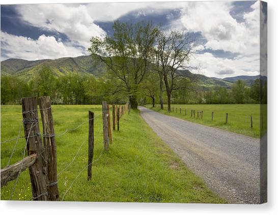 Sparks Lane In Cade Cove Canvas Print