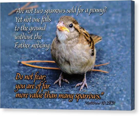 Sparrow Scripture Matthew 10 Canvas Print