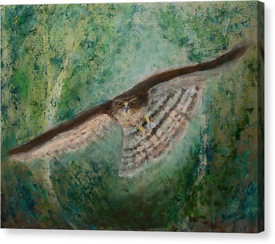 Sparrowhawk Hunting Canvas Print