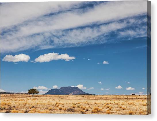 Canvas Print featuring the photograph Sparse by Rick Furmanek