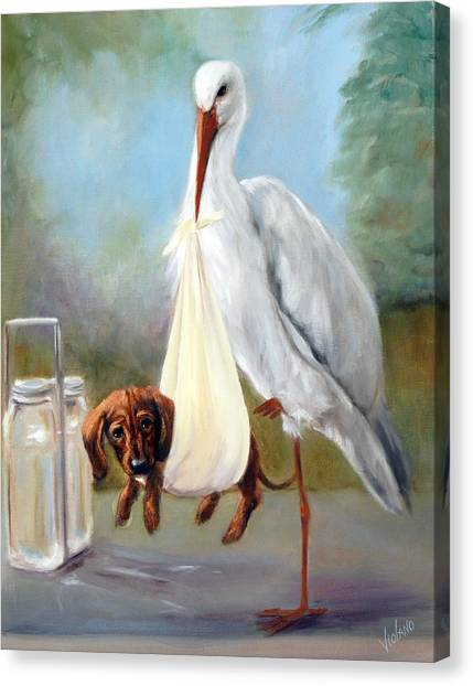 Special Delivery Canvas Print by Stella Violano