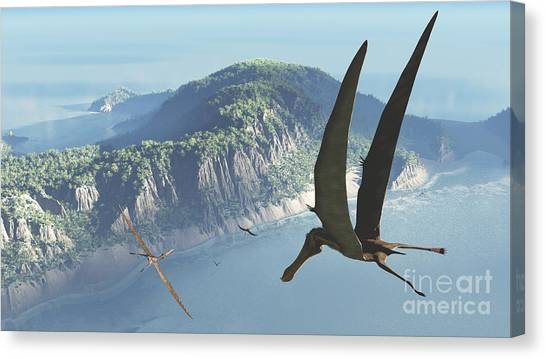 Pterodactyls Canvas Print - Species From The Genus Anhanguera Soar by Walter Myers