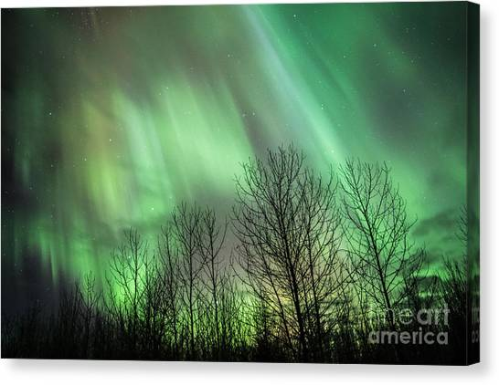 Spectacular Lights Canvas Print