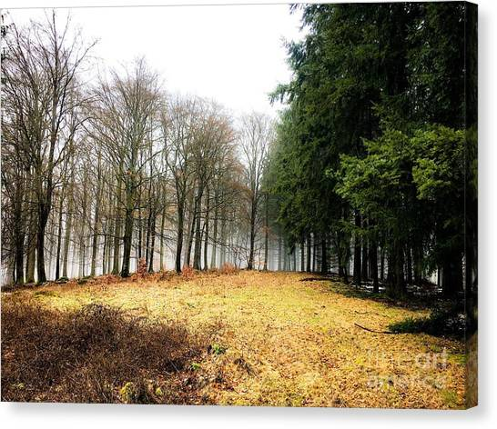 Spessart Landscape  Canvas Print by Adelso Bausdorf