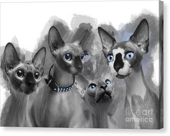 Sphynx Cats Canvas Print - Sphynx Group No 02 by Maria Astedt