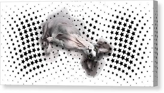 Sphynx Cats Canvas Print - Sphynx No 07 by Maria Astedt