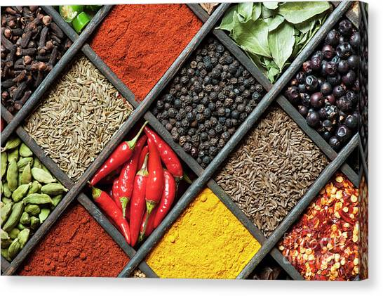 Indian Corn Canvas Print - Spices by Tim Gainey