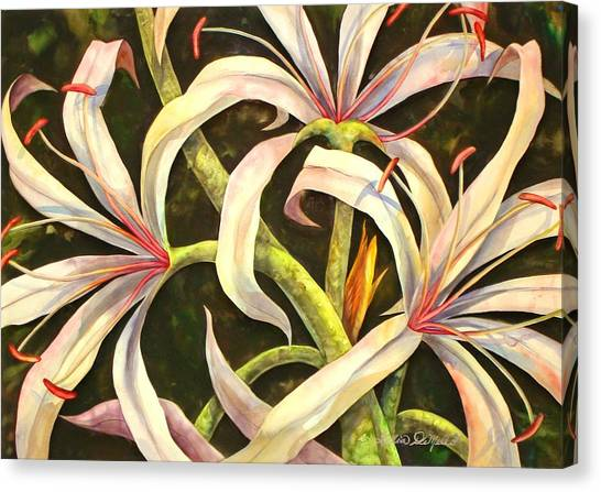 Spider Lily Canvas Print