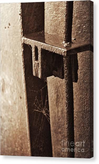 Spider Web Canvas Print - Spider Web by Ana V Ramirez