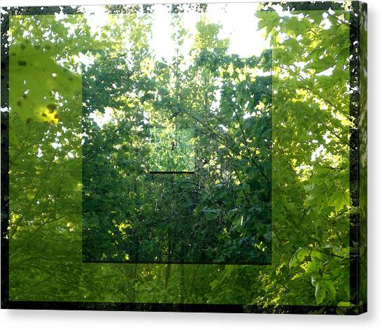 Canvas Print featuring the photograph Spider-web Squares by Michelle Audas