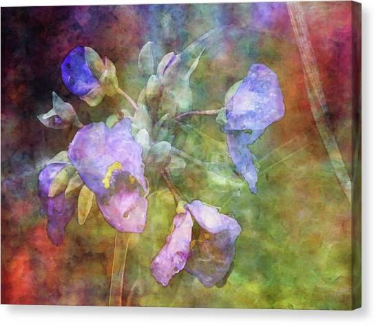 Spiderwort 1398 Idp_2 Canvas Print