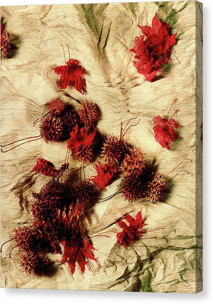 Spiked Nuts Red Canvas Print