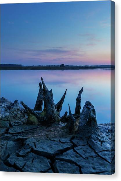 Canvas Print featuring the photograph Spikes In Blue by Davor Zerjav