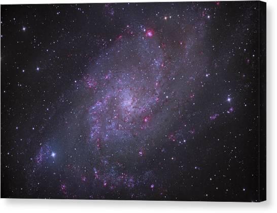 Spiral Galaxy M 33 Canvas Print by Brian Peterson
