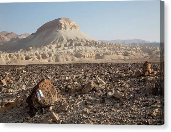 Spirit Of The Desert Canvas Print