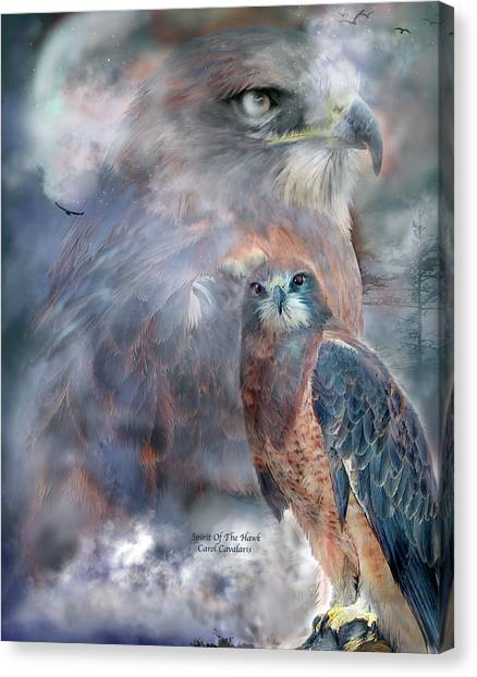 Hawks Canvas Print - Spirit Of The Hawk by Carol Cavalaris