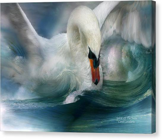Waving Canvas Print - Spirit Of The Swan by Carol Cavalaris