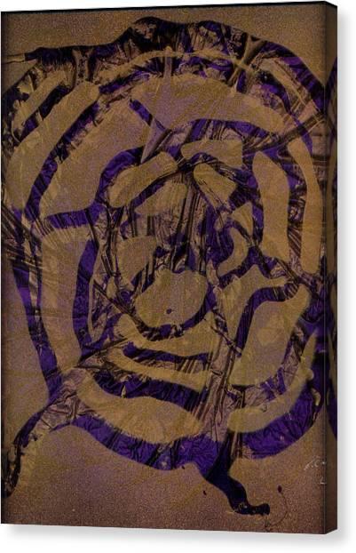 Spirit Web Canvas Print by Rick Silas