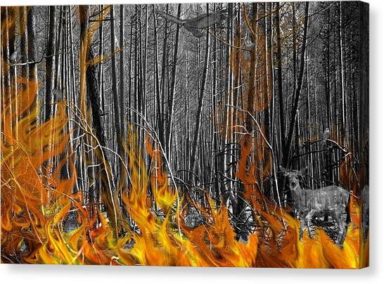 Spirits Of The Firestorm Canvas Print by Diane C Nicholson