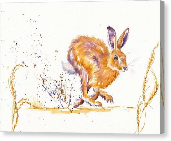 March Hare Canvas Print - Splash by Debra Hall