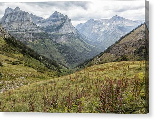 Splendor From Highline Trail - Glacier Canvas Print
