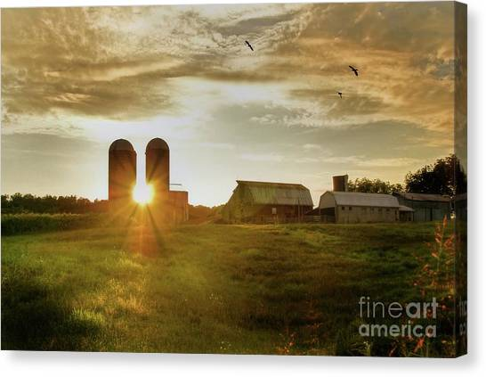 Corn Field Canvas Print - Split Silo Sunset by Benanne Stiens