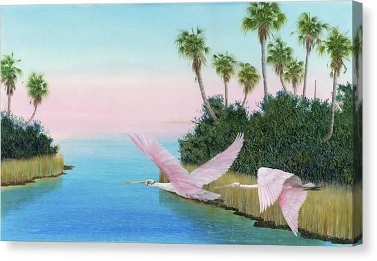 Spoonbills In Flight Canvas Print