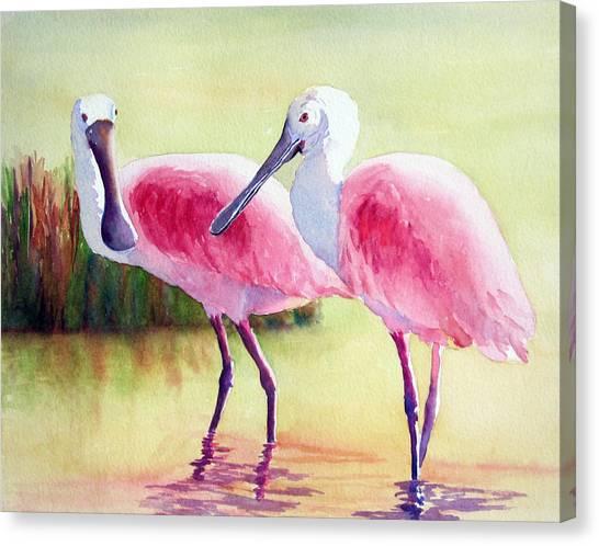 Spoonbills Canvas Print