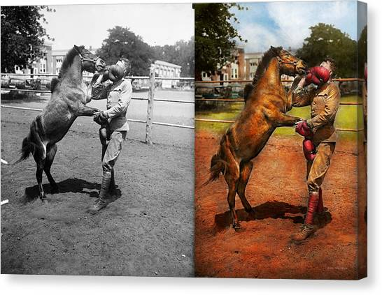 Funny Horses Canvas Print - Sports - Boxing - Below The Belt 1924 - Side By Side by Mike Savad