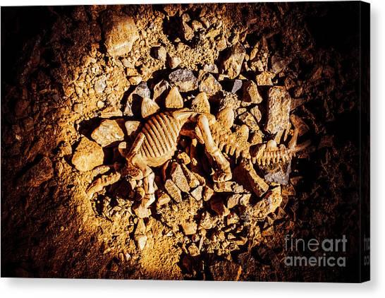 Star Trek Canvas Print - Spotlight On A Extinct Stegosaurus by Jorgo Photography - Wall Art Gallery