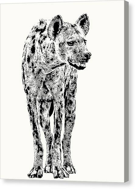 Spotted Hyena Full Figure Canvas Print