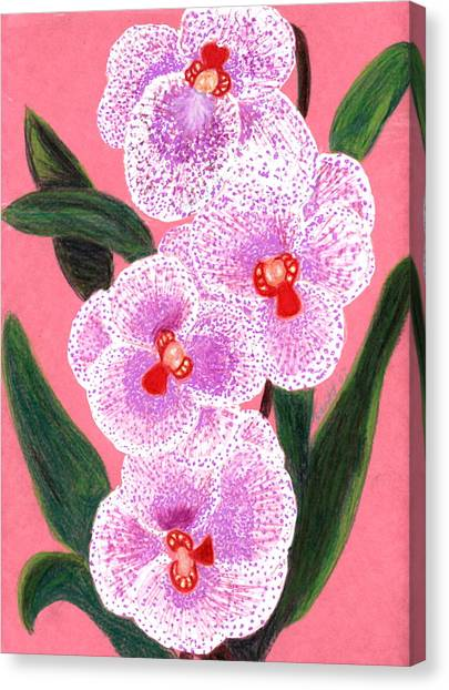 Spotted Orchid Against A Pink Wall Canvas Print by Carliss Mora