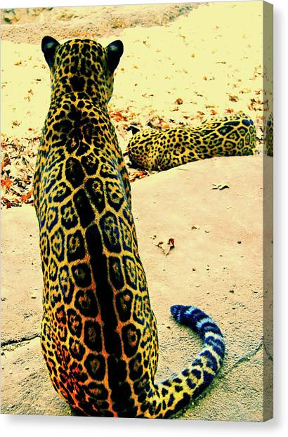 Spotted Siblings Canvas Print by JAMART Photography