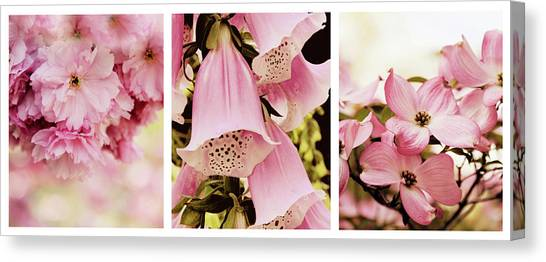 Foxglove Flowers Canvas Print - Spring Assemblage Triptych by Jessica Jenney