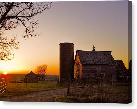 Spring At Birch Barn 2 Canvas Print