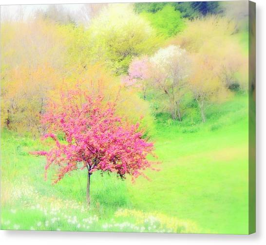 spring at Highland Park  Canvas Print