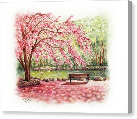 Spring At Lithia Park Canvas Print