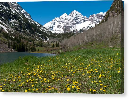 Spring At The Maroon Bells Canvas Print