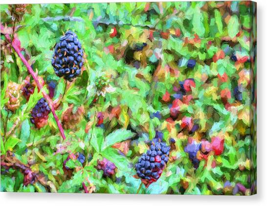 Wild Berries Canvas Print - Spring Berries by JC Findley