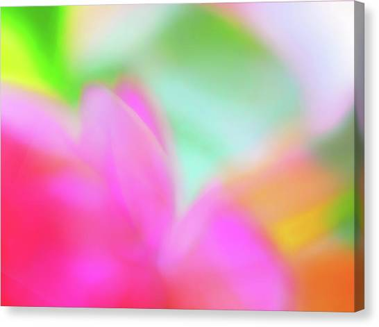 Spring Brights Canvas Print