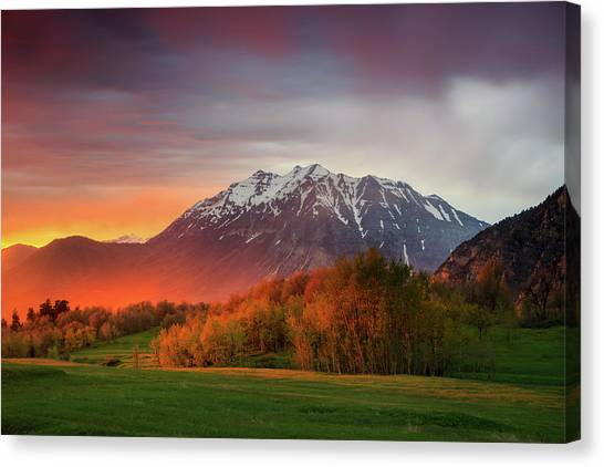 Spring Burner In The Wasatch. Canvas Print